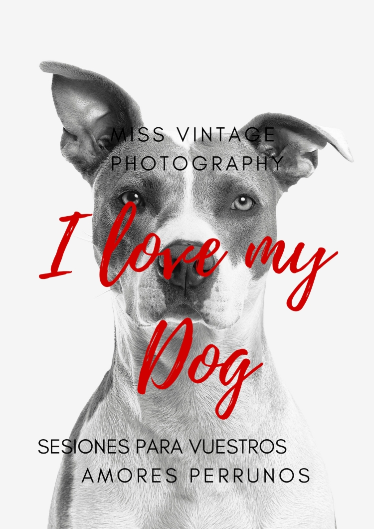 miss vintage photography (13)